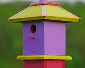 Handcrafted Birdhouse Whimsical Painted Apple Lilac Raspberry