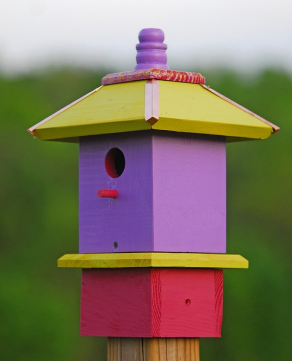 Handcrafted Birdhouse Whimsical Painted Apple Lilac Raspberry, Gift for Dad