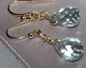 Aqua Dreamers Earrings 14K Goldfill