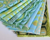 12 Amy Butler Fabric Fat Quarter Bundle FQ40