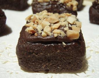Gourmet Dog Treats - Bow-wow-nies  Petite Brownies - Dog Treats All Natural Organic Vegetarian - Shorty's Gourmet Treats