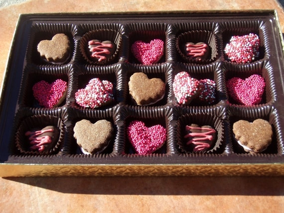 Organic Dog Treats - Box o' Hearts - Gourmet Dog Treats Vegetarian All Natural Gift Boxed Valentines Day - Shorty's Gourmet Treats