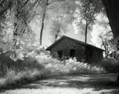 Moss and an Old Manse - 8x12 Metallic Print (Infrared Cabin and Forest Woods Landscape)