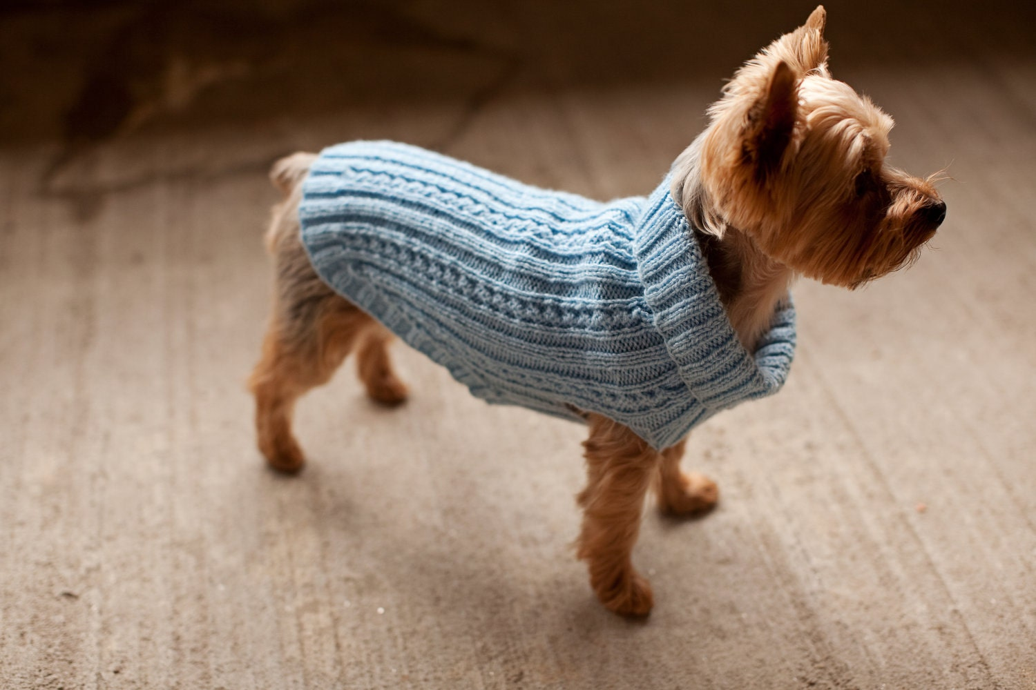 Free Knitted Dog Coat Patterns : Dog Sweater Dog Jacket Dog Coat. Hand Knit. Custom fit