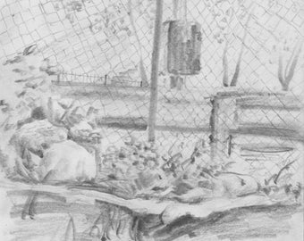 Cityscape Garden - Bronx - NYC - signed print of original pencil sketch - 8 x 10 inches - Support Friends of the Woods