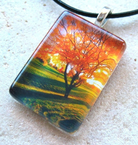 Sunlight Through New York Tree- Glass Rectangle Photo Pendant with Black Ball Chain