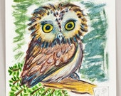 Pine Owl Original Fine Art Illustration