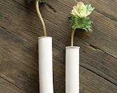 Wall Mount Test Tube Vase