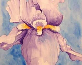 iris watercolor painting . . .