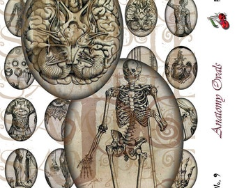 Vintage Anatomy, 30 x 40 Ovals, for cameo jewelry, buttons, pendants, scrapbooking, in Greys, Neutrals - Sheet No. 9, Instant Download