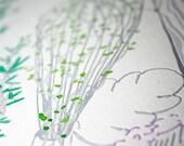 Herb Terrarium Letterpress & Watercolor Limited Edition Print- Kitchen Art
