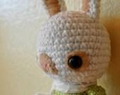 LIttle Brock Bunny