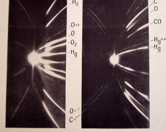 1929 Positive Rays and Tissue Culture Illustrations 2 vintage scientific prints