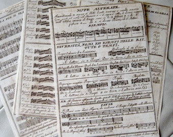 Musical Notes Italian Paper Pack