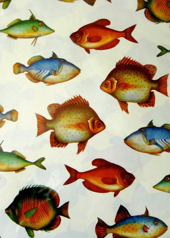 9x12 Italian Fish Paper - Qty:3