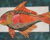 Fish of the day - orange