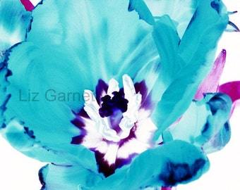 SALE - Contemporary Photograph of Blue Tulip (UK598/21p - 10 of 45) mounted - reduced for studio clearance