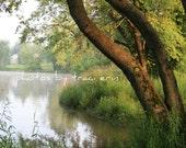 Creekside - Fine Art Photograph