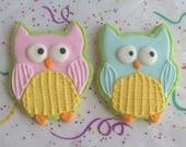 Owl Cookies - Owl Decorated Cookie Favors - Owl Decorated Cookies - 1 Dozen