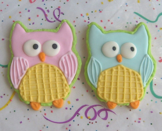Reserved for Stacy----Owl Cookies - Owl Decorated Cookie Favors - Owl Decorated Cookies - 1 Dozen