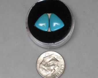 BUTTERFLIED  VINTAGE sleeping beauty EARRING turquoise cabochons 1