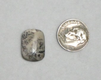 pillow shaped fossilized bone cabochon 1