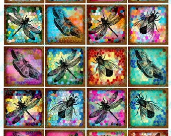 INSTANT DOWNLOAD Digital Collage Sheet - Insects on Stained Glass 2 inch Squares - DigitalPerfection digital collage sheet 565