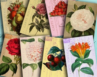 Instant Download Digital Collage Sheet Fruits and Flowers on Vintage Postcards ATC ACEO 2.5 X 3.5 inch - DigitalPerfection digital sheet 811