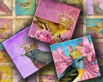 INSTANT DOWNLOAD Digital Collage Sheet Cute Birds with Cute Crowns 1 inch Squares - DigitalPerfection digital collage sheet 856
