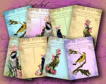 Instant Download Digital Collage Sheet Birds on Vintage Postcards ATC 2.5 X 3.5 inch - DigitalPerfection digital collage sheet 922