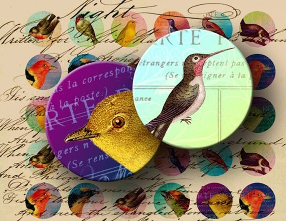 INSTANT DOWNLOAD Digital Collage Sheet - Sweet Birds on Vintage Postcards 1 inch Circles - DigitalPerfection digital collage sheet 830