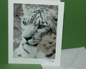 White Tiger Art Note Card