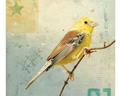 Bird No.4