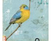 Bird No.5