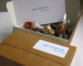 galipette sampler box