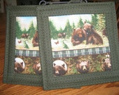 Quilted Bear Stripe Pot Holders - Set of 2