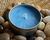 Cool Water (type) Soy Candle - 8oz Travel Tin