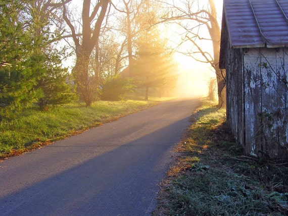 Rustic Photo 5x7 Here Comes the Sun Nature Photography