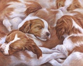 Pile o' Britts, 5.5 x 4.25 blank notecard, Brittany puppy