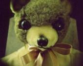 Teddy Bear Polaroid Print - Bear in the Headlights - 5x5 fine art print