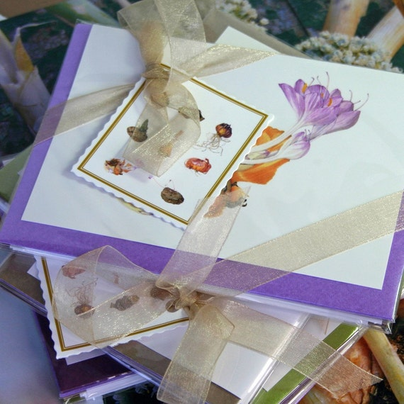Gift Pack 'Bulbs, Tubers and Corms'.