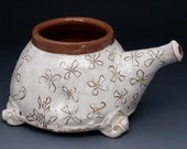 nasal irrigation pot with arugula