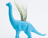 Large Dinosaur Planter with Air Plant Room Decor, College Dorm Ornament, Plants and Edibles
