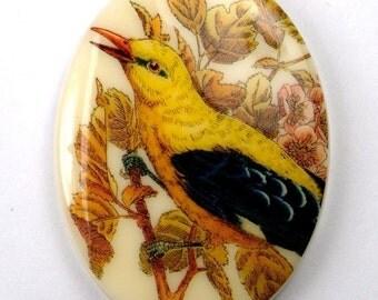 1 pc  Oval Vintage German Plastic Yellow Wild bird Scene Cabochon  40x30mm