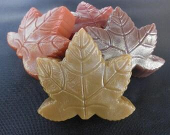 Fragrant Leaf Soaps (2) in Pumpkin, Cinnamon, Maple, and Autumn