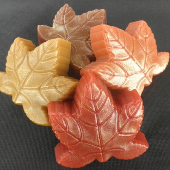 Thanksgiving Gift Fall Leaves in pumpkin spice, autumn, maple, cinnamon