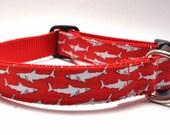 Shark Dog Collar / Jaws in Red / Beach Dog Collar / Nautical