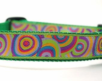 Targets Dog Collar / Bullseye in Green / Custom Dog Collar