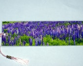 Field of Lupin Photo Bookmark