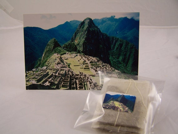 Mate de Coca - Inka Tea - Peruvian Coca Leaf Tea - 5 Tea Bags - Gift Set  Machu Picchu Peru Herbal Tea Natural Healing Stocking Stuffer
